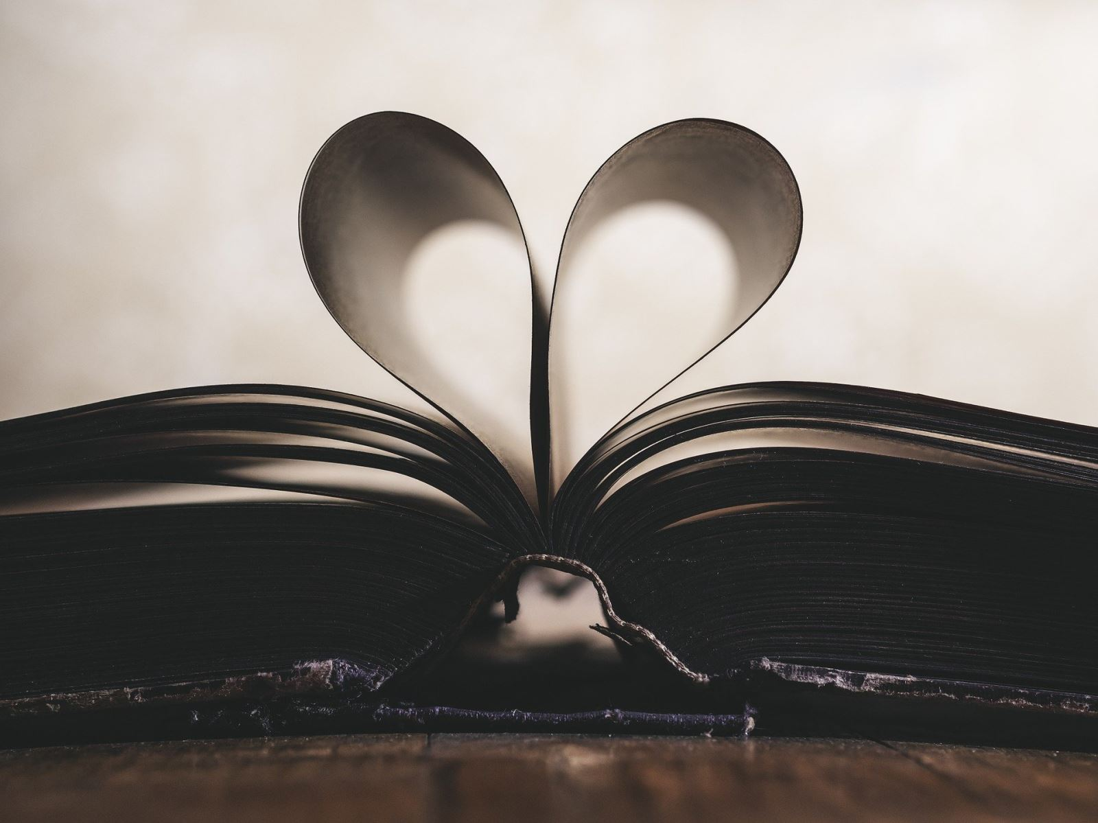 Photograph of an open book whose pages are bent upward to form a heart shape.